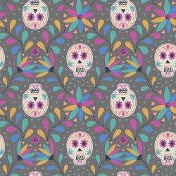 Paracas Gray Skull