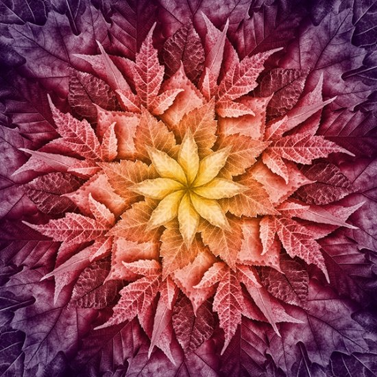 24617-428 Mulberry - Dream Big Leaf Digital Print by Hoffman