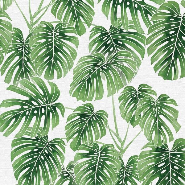 Modern Botanicals - Monstera