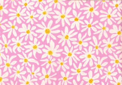 Daisy Chain in Pink - Brandon Mably