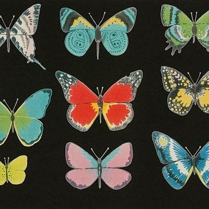 El Tiempo de Mariposa in Black Brite from the Folklorico Collection