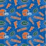 NCAA Florida