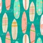 Beach Surf Boards
