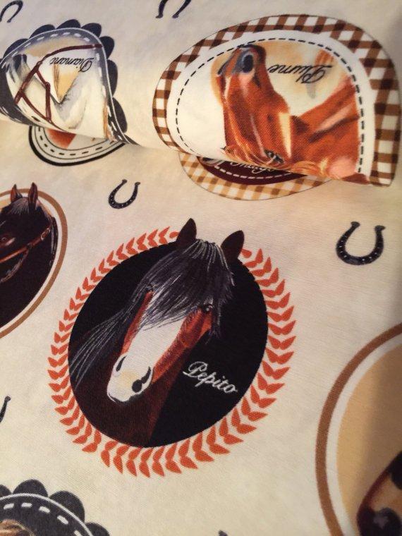 Horse Portraits in Cream