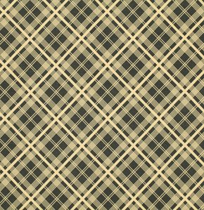 Chicopee Simple Plaid in Black