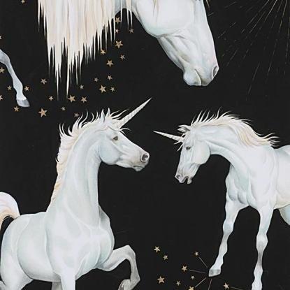 Stars of the Unicorn in Black