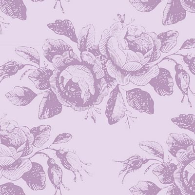 Old Rose Mary in lilac mist -- Tilda