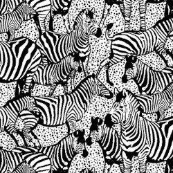Serengeti Zebras in Black and White