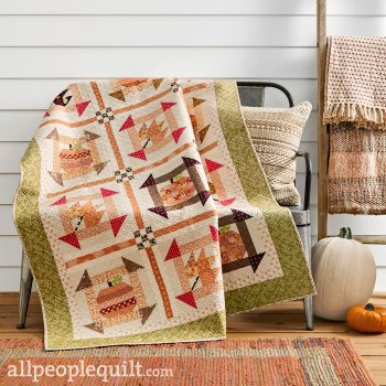 American Patchwork and Quilting February 2020