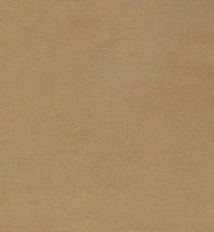 Cornstalk Weavers Cloth