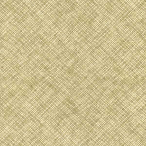 Metallic Bias Sketch- Cream