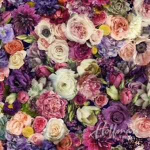 Grand Blooms - Peony