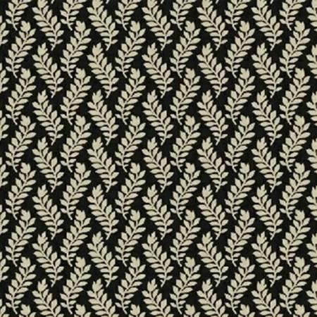 Black Fern (#7017)