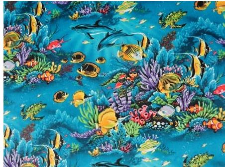 Tropical Sea Life aqua