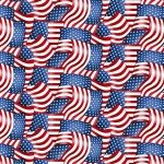 American Trucker -  Red American Flag Packed