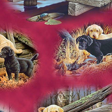 Labrador-Able 26650-R