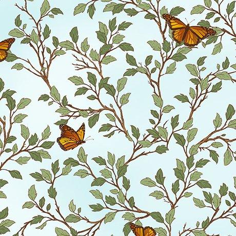 Serenity Prayer - Butterfly Vine