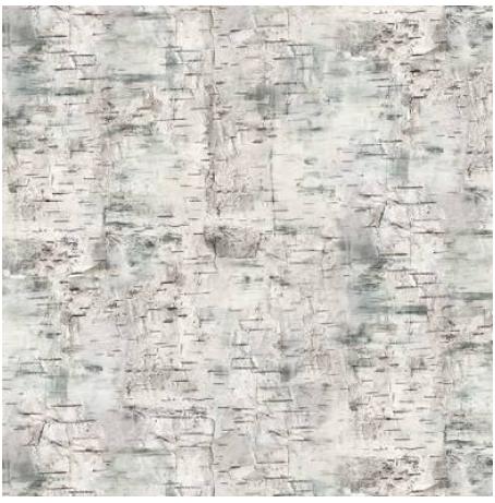 Deer Meadow - Gray Bark Texture