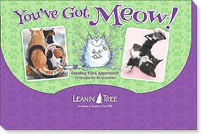 You've Got Meow!