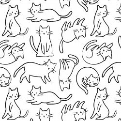 Meow Felines - Cats on White Background