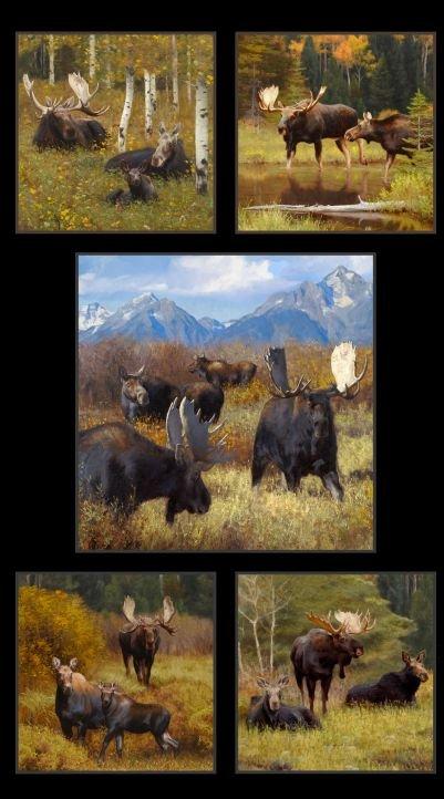 Moose Panel - 24 x 45