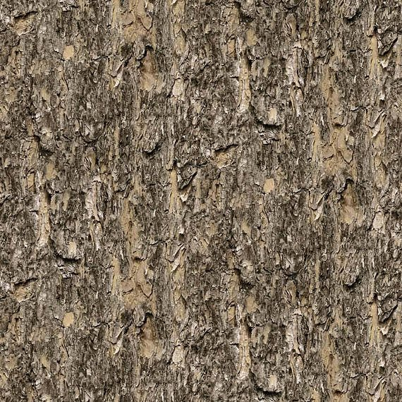 Naturescapes - Neutral Bark