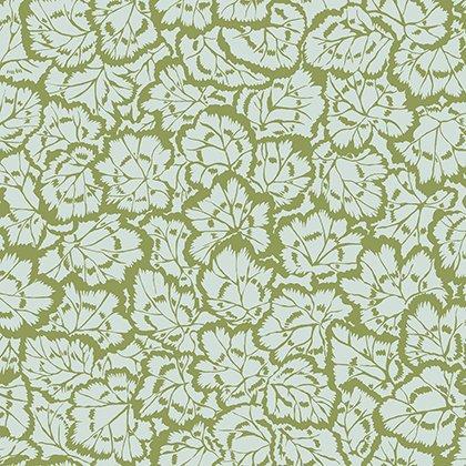 Pelargonium Leaves - Ivy