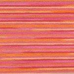 Cosmo Floss - Seasons Variegated #5003