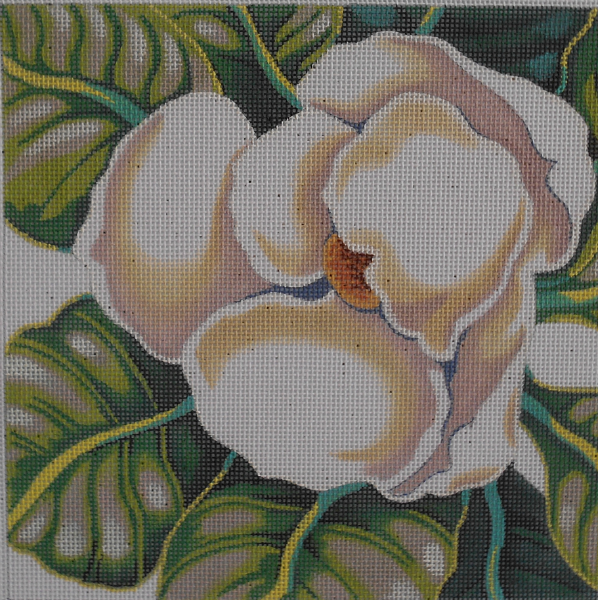 Magnolia by Shorebird
