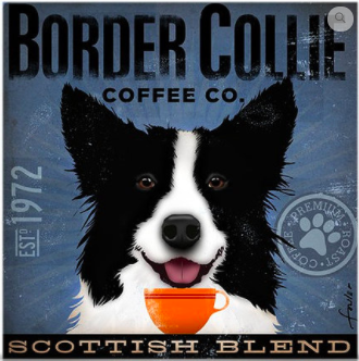 Border Collie Coffee Company from Tango & Chocolate