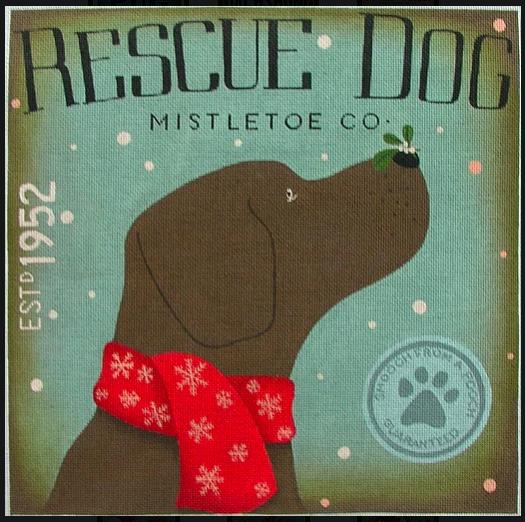 Rescue Dog Mistletoe Co from Tango & Chocolate