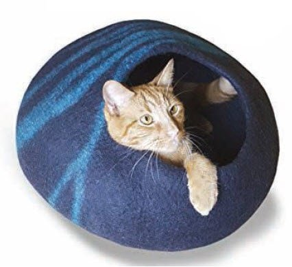 Blue Wave Cat Cave