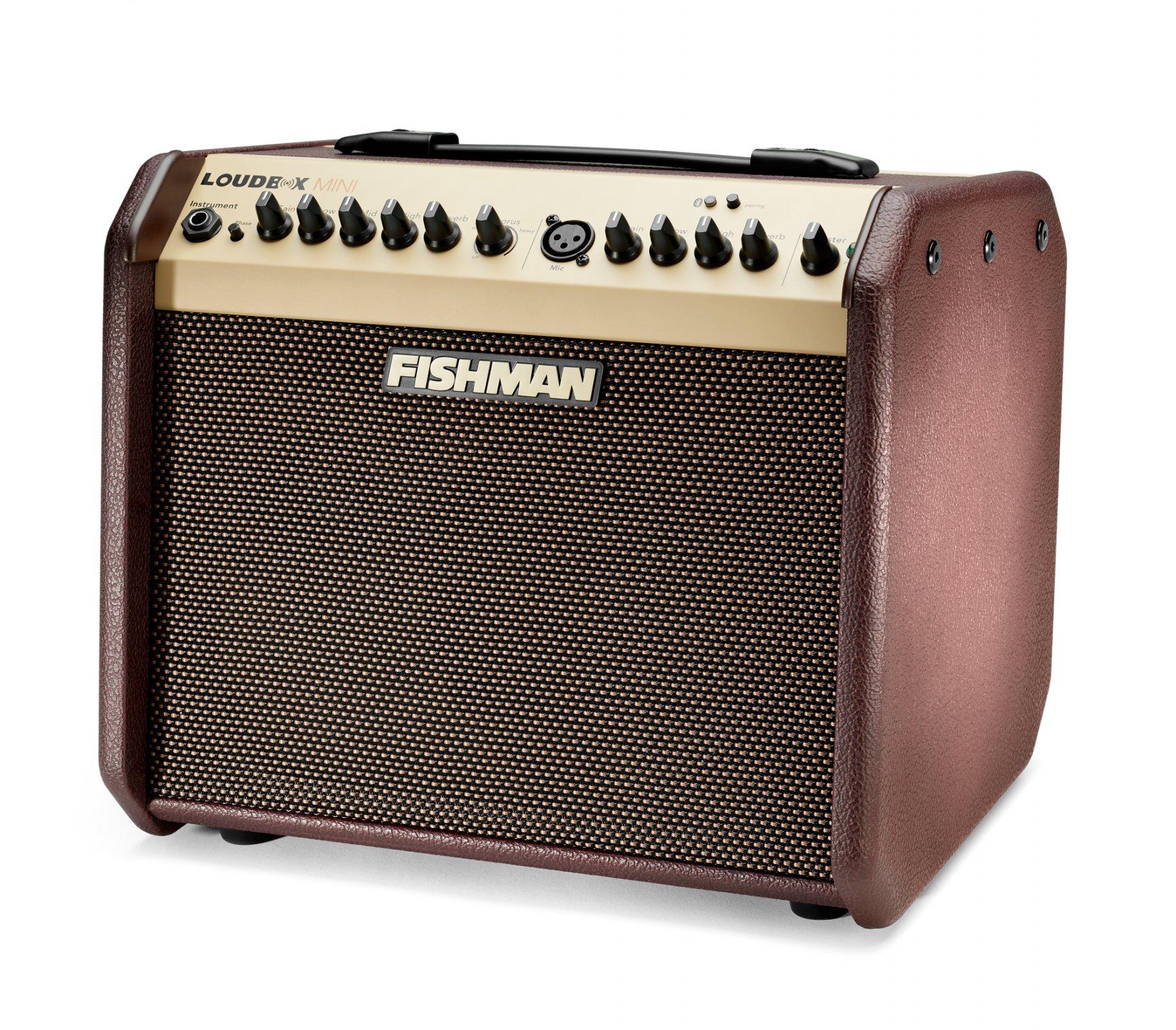 Fishman Loudbox Mini Bluetooth Amplifier