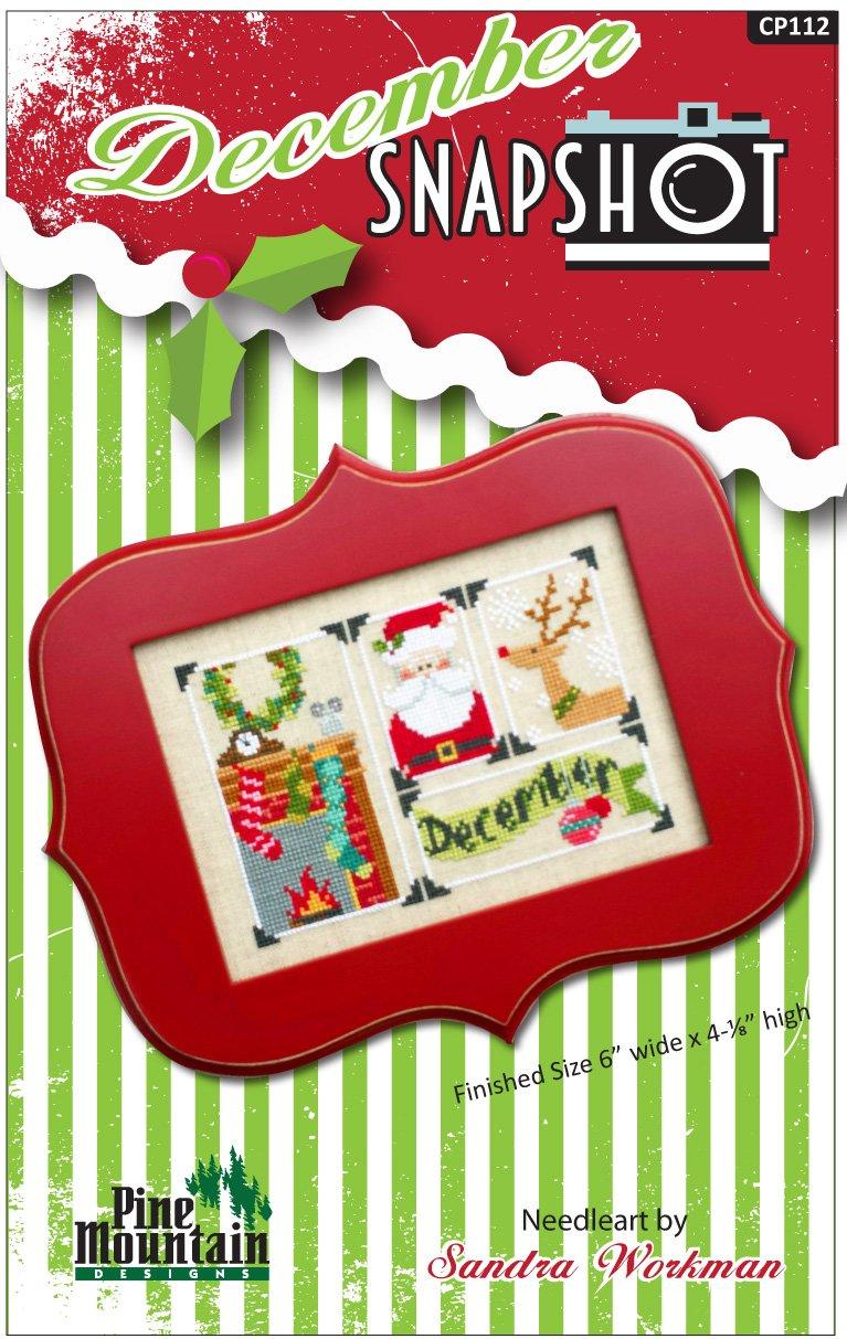 December Snapshot Digital Download pattern cp112d