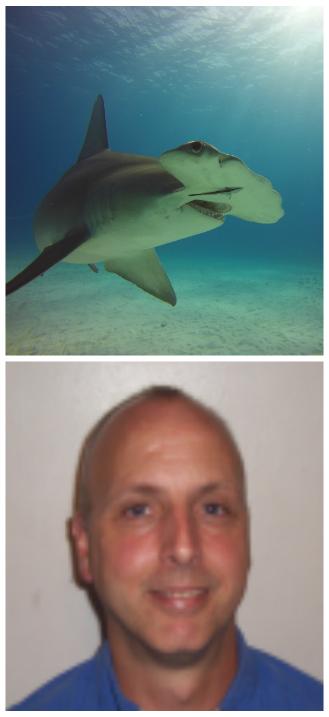 Dave Stickney, SSI Divemaster
