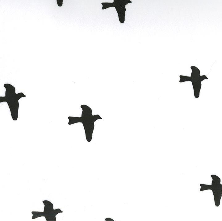 EZ Birds, White/Black, 58/60