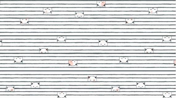 Kitty Stripe