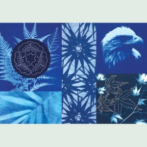 Blue Cyanotype Fabric 1 Yard Package With Instructions