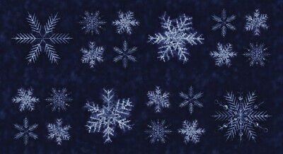 Moda Tochi shimo sunforeko- 24 x 44 panel neibi (indigo snowflakes)
