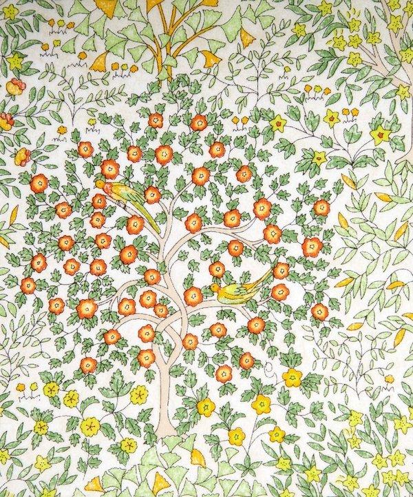 Liberty of London Cotton Tana Lawn - Jess and Jean 4183/C