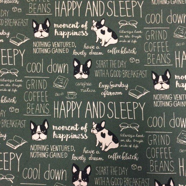 Seven Islands Inc Kokka 100% Cotton Canvas Fabric 45 - Phrases & Bostons on Green