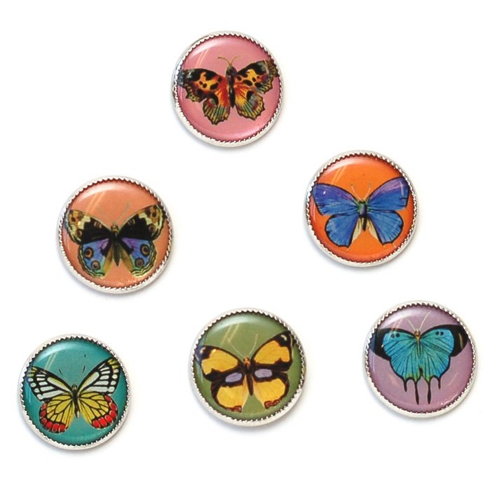 Butterfly Picture Button