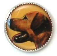 Dog Breed Buttons