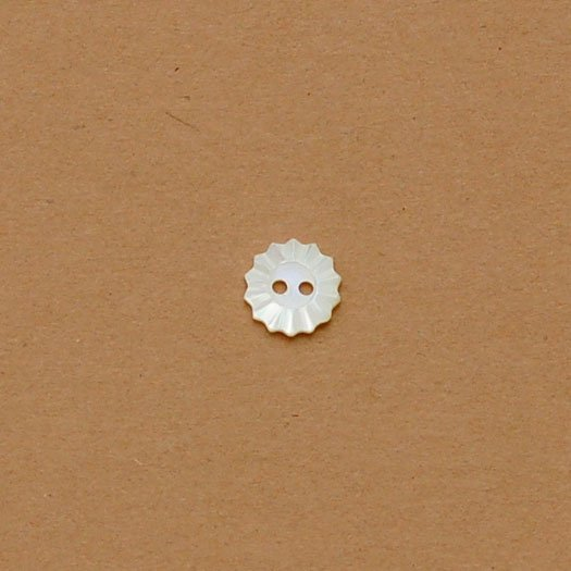 Fluted Carved Shell Button