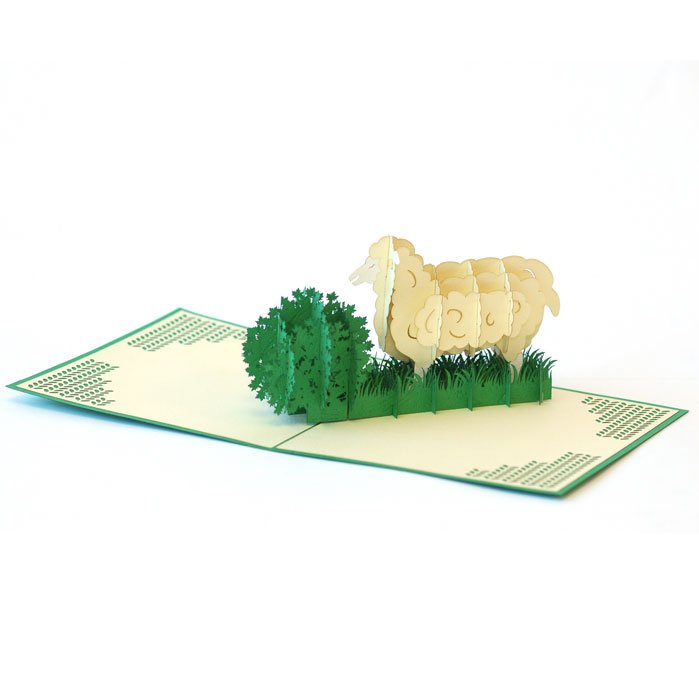 3-D Pop Up Card - Creative with Clay