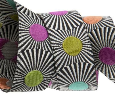 Stripes & Colored Dots 7/8 inch (22 mm) Jacquard Ribbon - Tula Pink