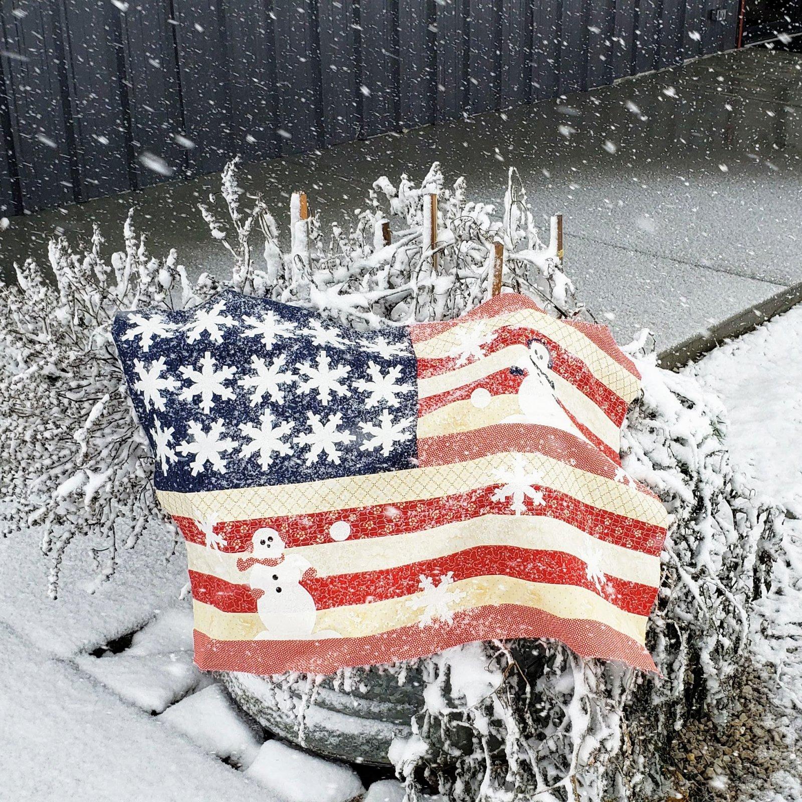 Snowman Flag Kit