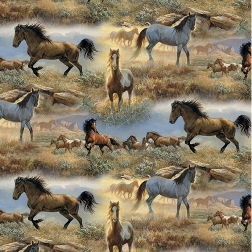 Horses in the Praries