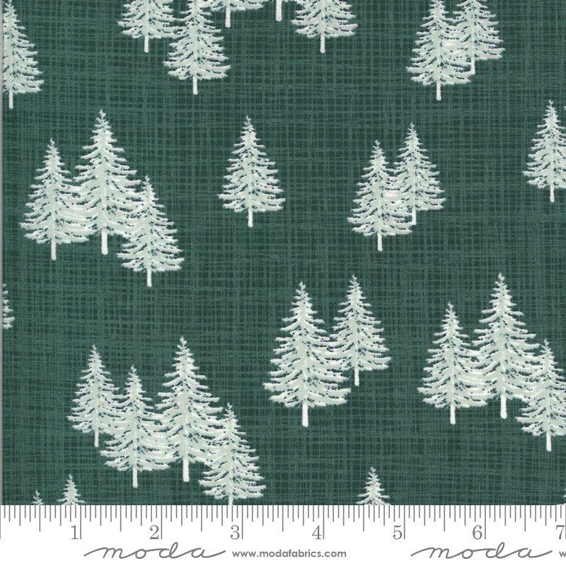 Juniper Spruce