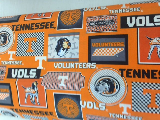 College Prints University of TN 1130